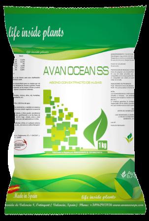 AVAN-OCEAN-SS-1KG-frontal