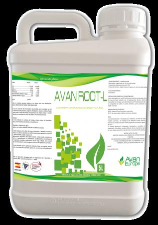 AVAN-ROOT-L