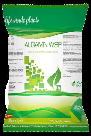 (BOLSA-AVAN)ALGAMIN-WSP-FRONTAL-1K